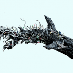 Kala Seniman Bicara Krisis Lingkungan